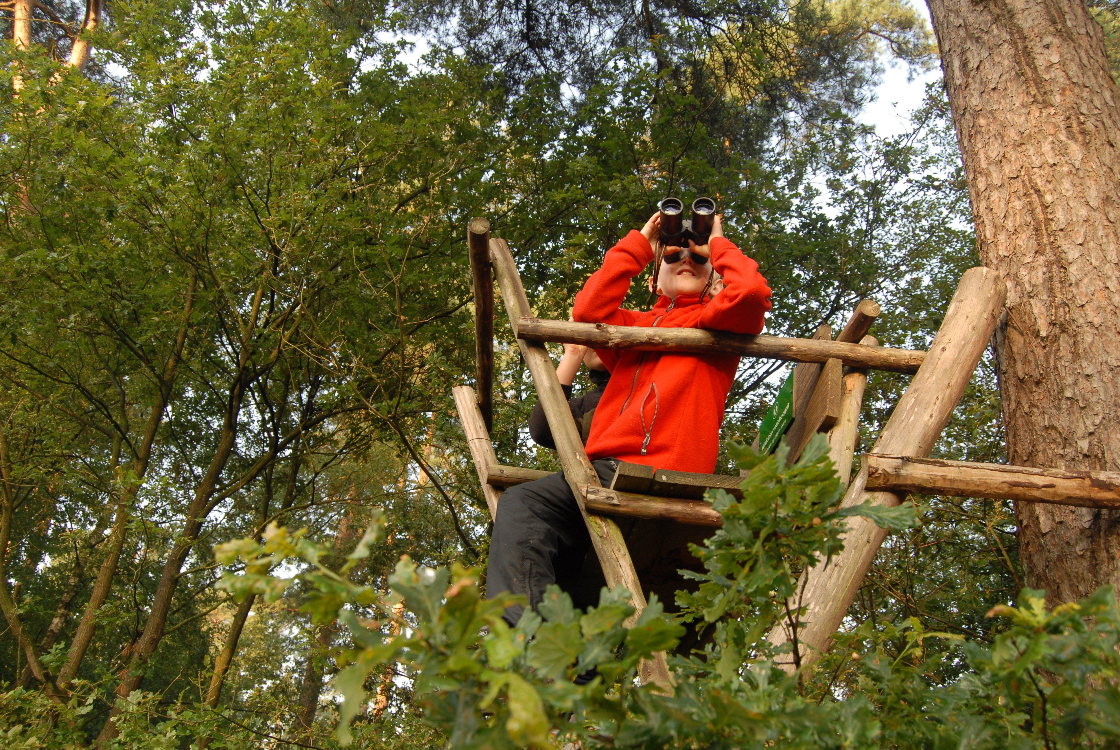 Activiteiten Voor Kinderen In De Herfstvakantie Park Hoge Veluwe